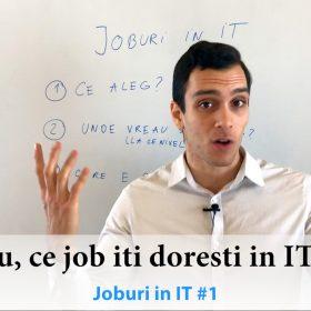 Cum sa alegi un job in domeniul IT ?   Joburi in IT #1 2